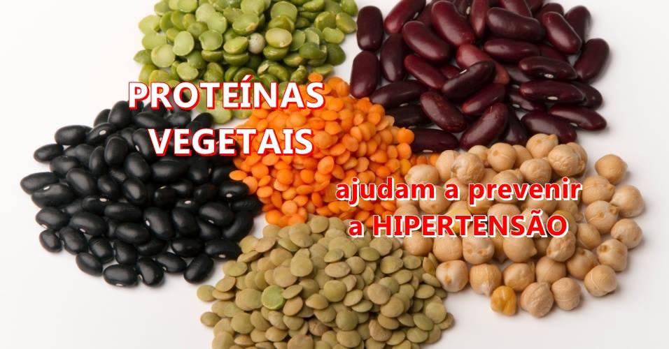 4 vantagens das proteínas vegetais