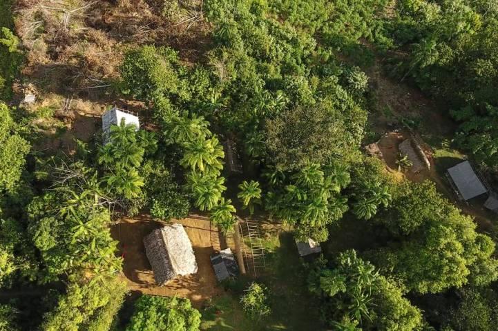 amazonia-reserva-renca-2017-7289